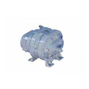 Positive Displacement Blowers – D L  Thurrott